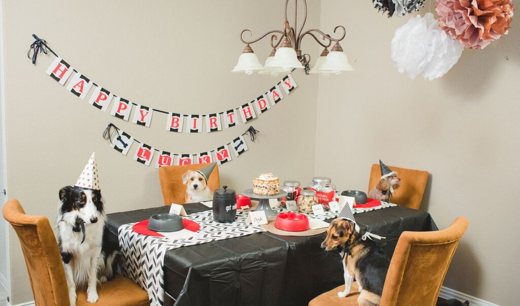 puppy-party-table