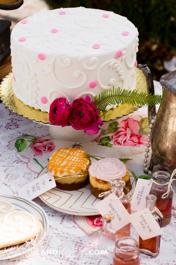 dallas-wedding-photographers-mariel-and-joey-lifestyle-photography-keestone-events-at-arlington-hall-we-+-you-flowers-rent-my-dust-dandelion-cheesecakes-panini-bakery-cakes-196