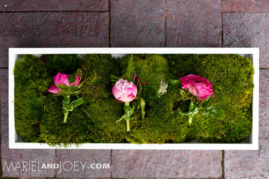dallas-wedding-photographers-mariel-and-joey-lifestyle-photography-keestone-events-at-arlington-hall-we-+-you-flowers-rent-my-dust-dandelion-cheesecakes-panini-bakery-cakes-282