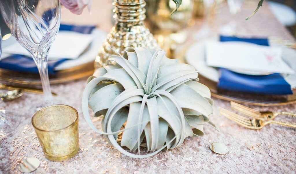 tanlged-inspired-wedding-table-decor