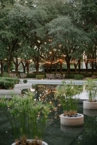 View of the garden at Marie Gabrielle, of a pond with lit trees and string lights