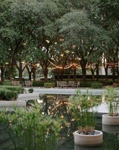 View of the garden at Marie Gabrielle of a pond with lit trees and string lights