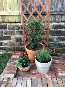 Three flower pots in a backyard