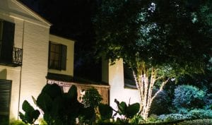 white building in a garden highlighted by uplights at night