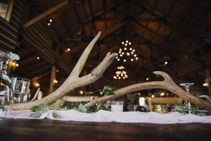 Antlers displayed as part of the decor at the head table, sitting above a blush runner