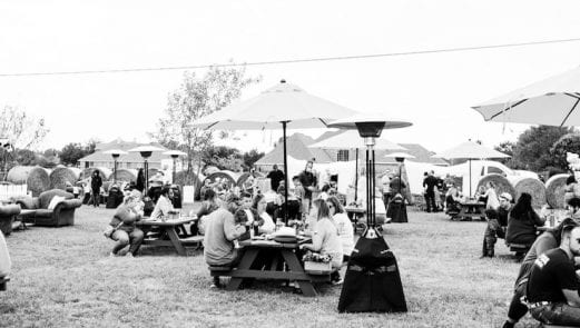 People eating at picnic tables with umbrellas in an open field